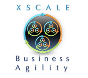 XScale Alliance Agile20Reflect Festival